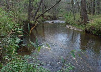 Greystone Preserve in Spring, North Augusta SC