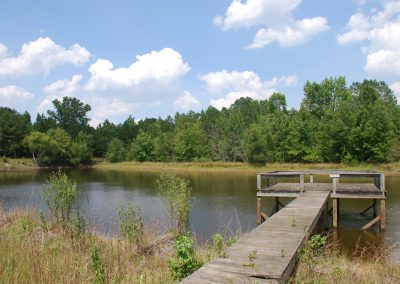 Summer's day at the dock, McDuffie Preserve