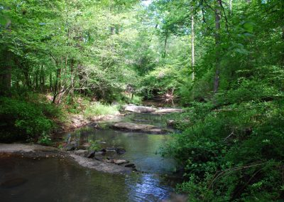 Rousseau Creek, preserved forever here in Appling, GA