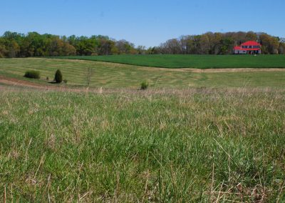 The historic landscape of Cedar Falls Farm, Hart County GA