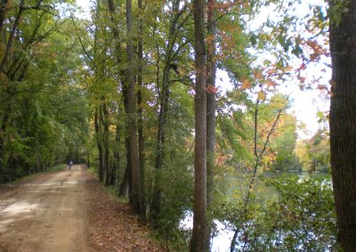 Preserved land on the Augusta Canal Trail in the Fall