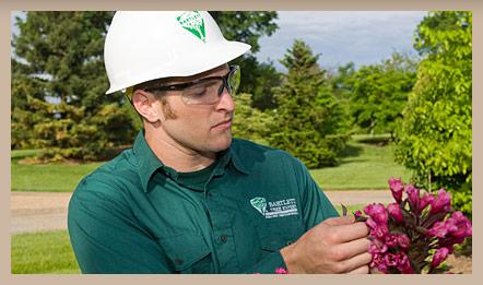 Justin Lee: Certified Arborist, Bartlett Tree Experts