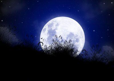 The-Moon